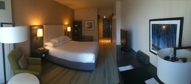 Deluxe King (standard room)